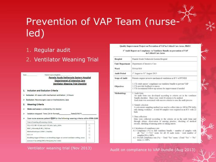 Prevention of VAP Team (nurse-led)