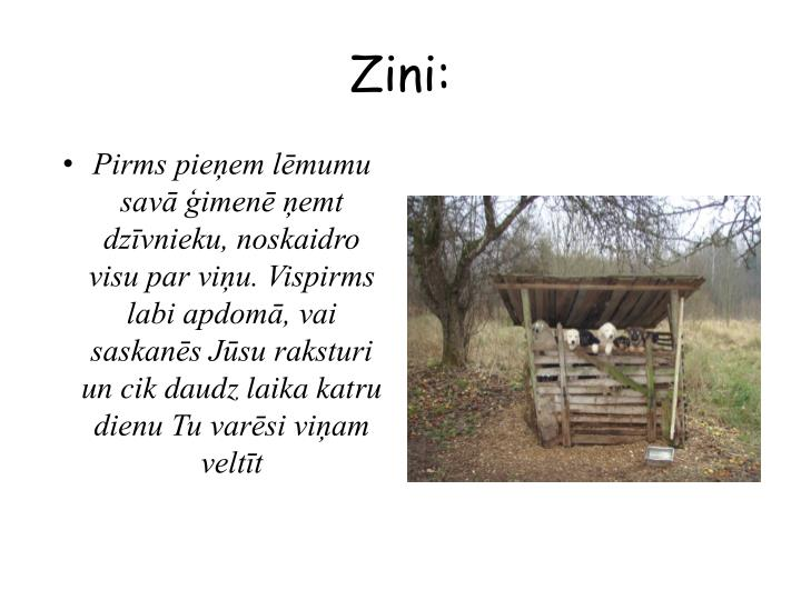 Zini: