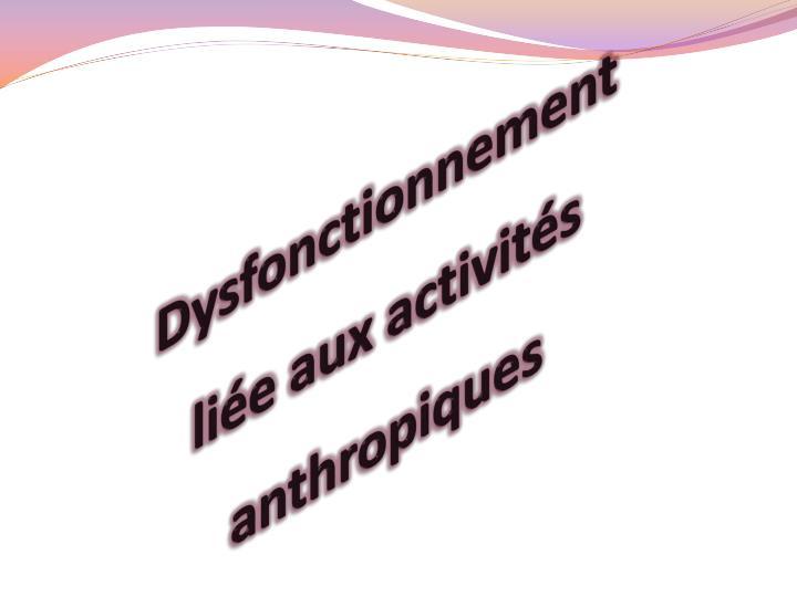 Dysfonctionnement liée aux activités anthropiques