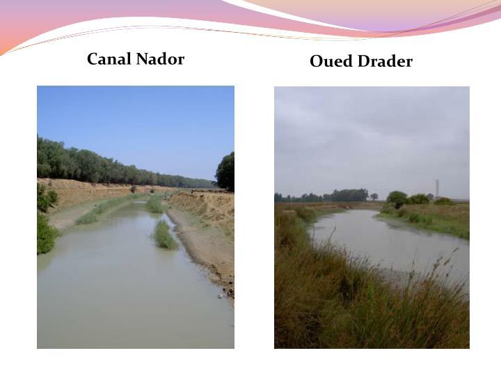 Canal Nador