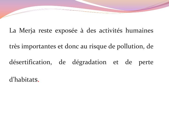 La Merja reste exposée à des activités humaines très importantes et donc au risque de pollution, de désertification, de dégradation et de perte d'habitat