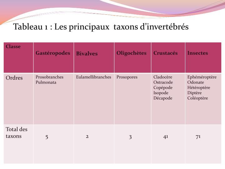 Tableau 1: Les principaux  taxons d'invertébrés