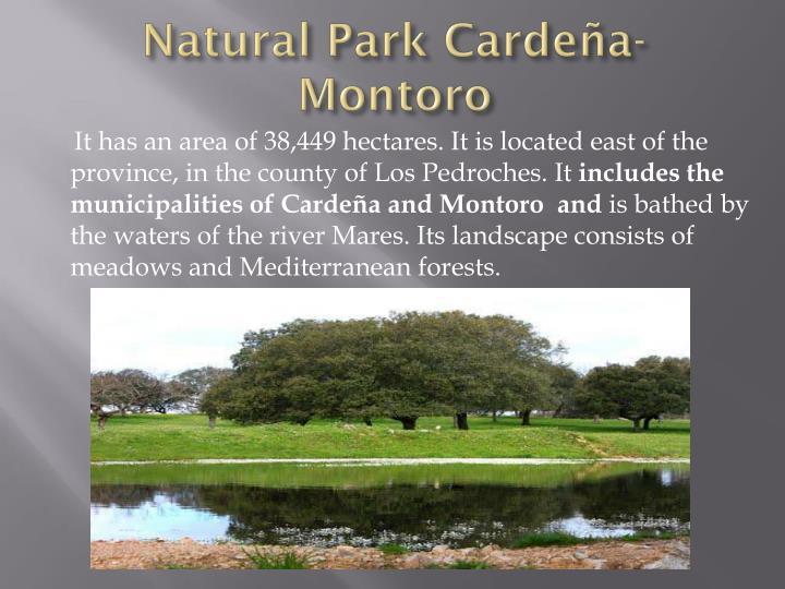 Natural Park Cardeña-