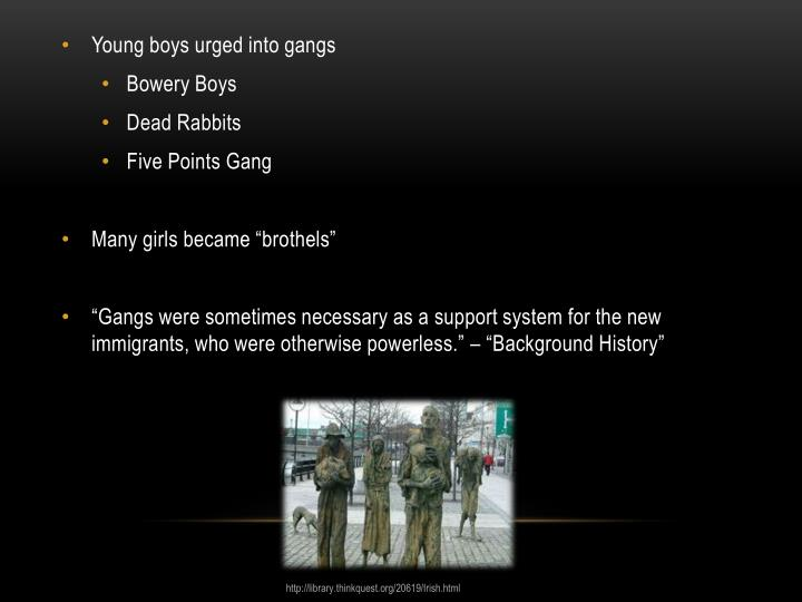 Young boys urged into gangs