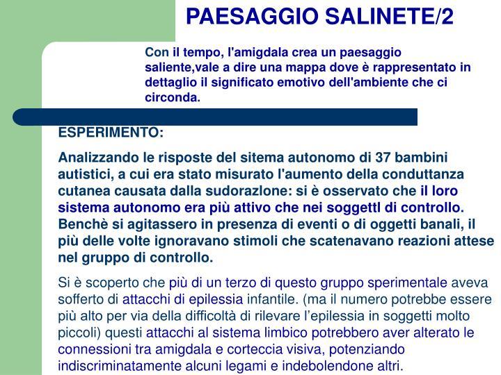 PAESAGGIO SALINETE/2
