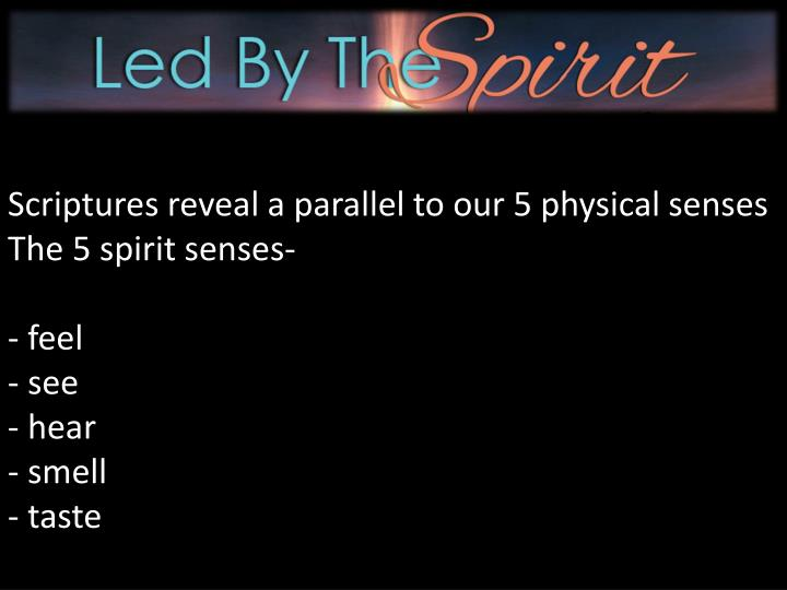 Scriptures reveal a parallel to our 5 physical senses