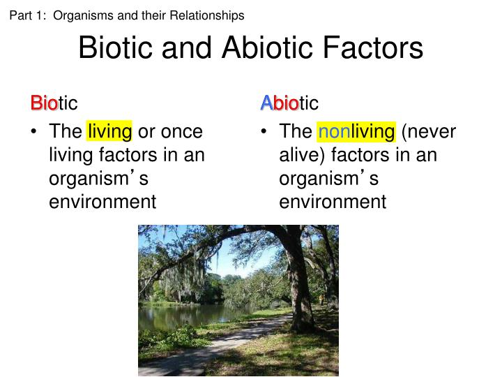 biotic and abiotic influences on the Ecology is the study of relationships between organisms and their environment  a combination of biotic and abiotic factors influences where organisms can live.