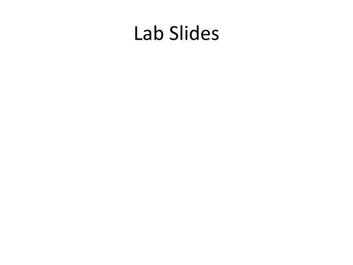 Lab Slides