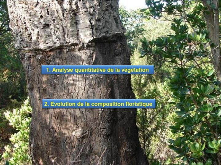 1. Analyse quantitative de la végétation