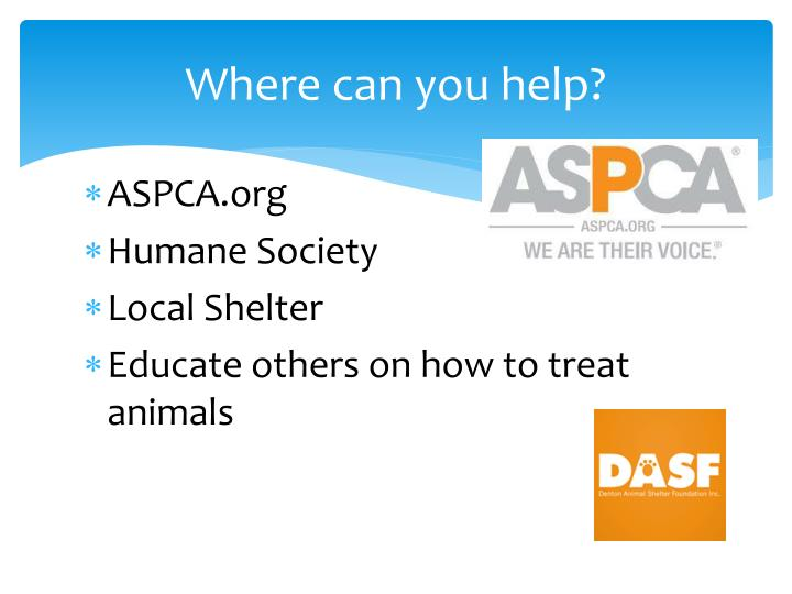 Where can you help?