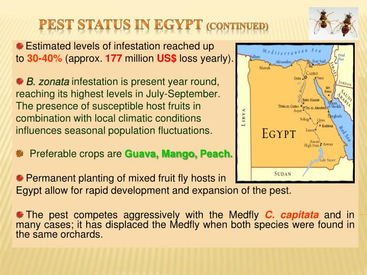 Pest Status in Egypt