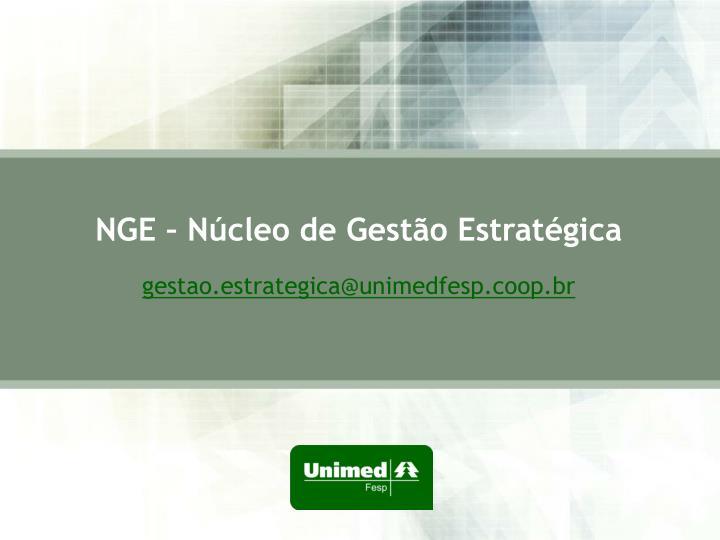 NGE – Núcleo de Gestão Estratégica