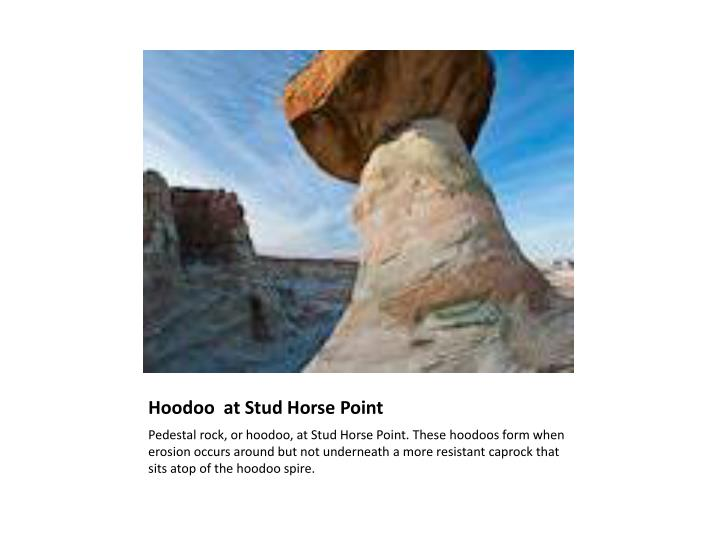Hoodoo at stud horse point