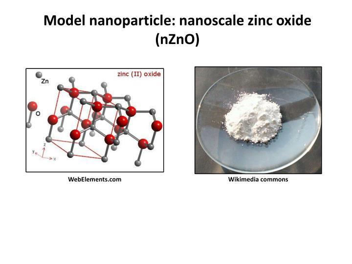 Model nanoparticle: nanoscale zinc oxide (nZnO)