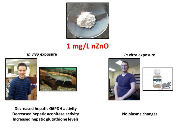 1 mg/L nZnO