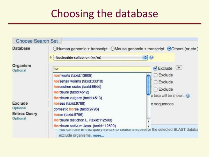 Choosing the database