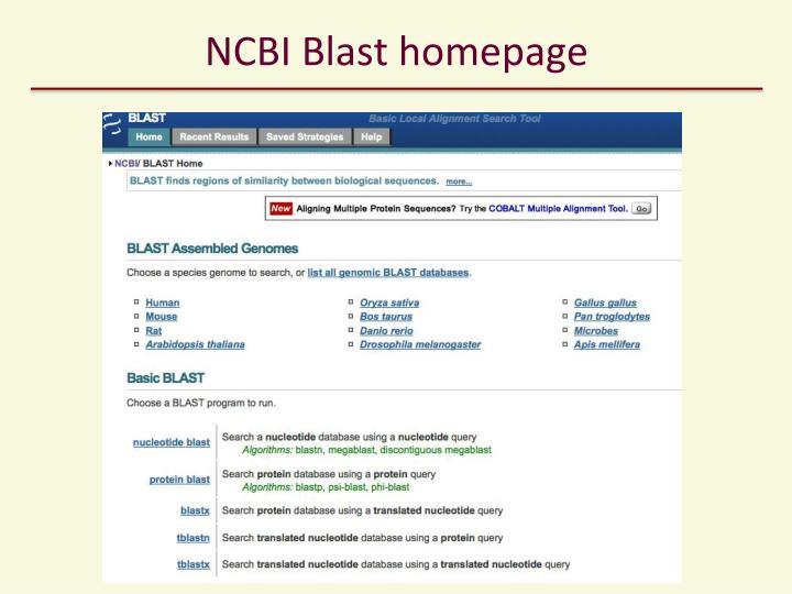 NCBI Blast homepage
