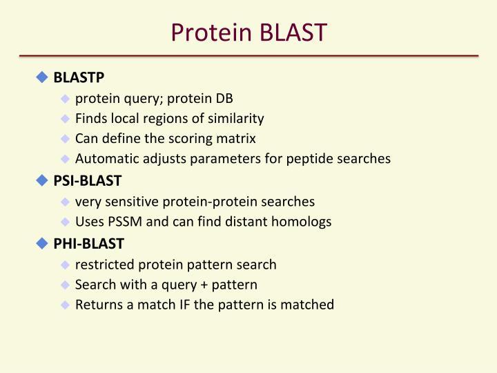 Protein BLAST
