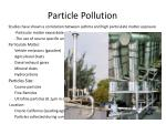 particle pollution