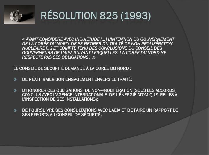 Résolution 825 (1993)