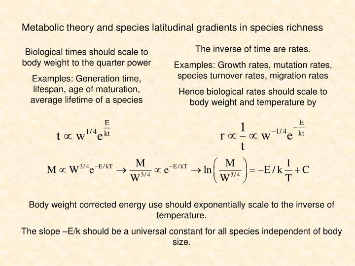 Metabolic theory and species latitudinal gradients in species richness