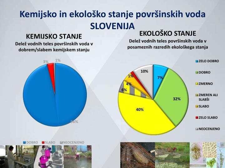 Kemijsko in ekološko stanje površinskih voda