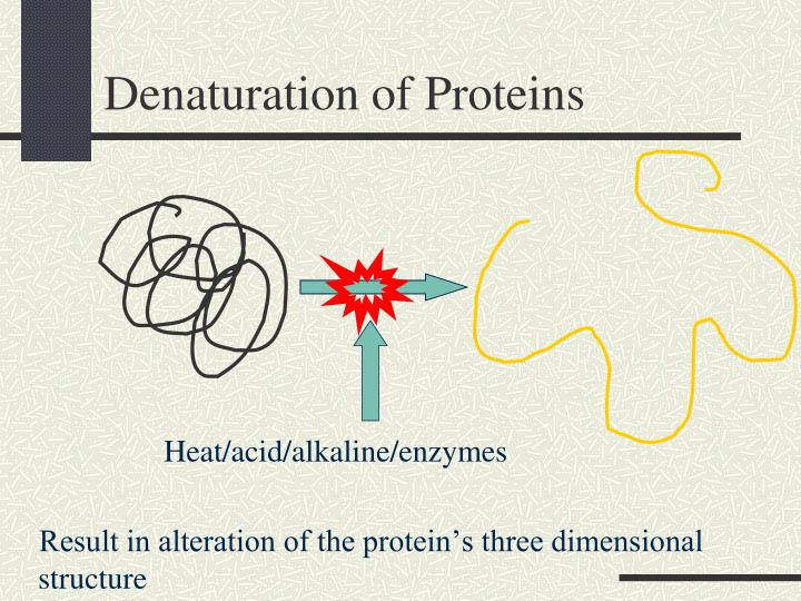 Heat/acid/alkaline/enzymes