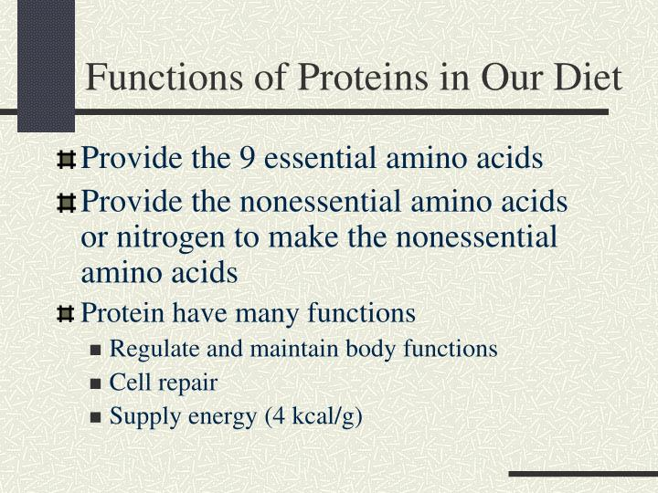 Functions of Proteins in Our Diet