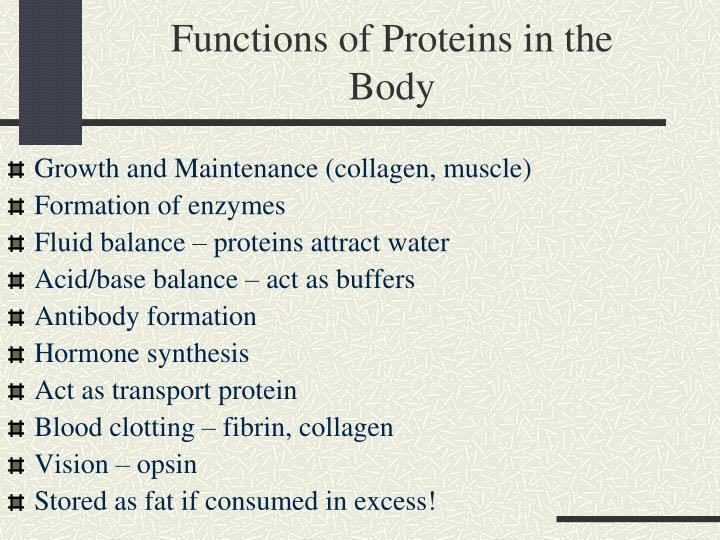Functions of Proteins in the