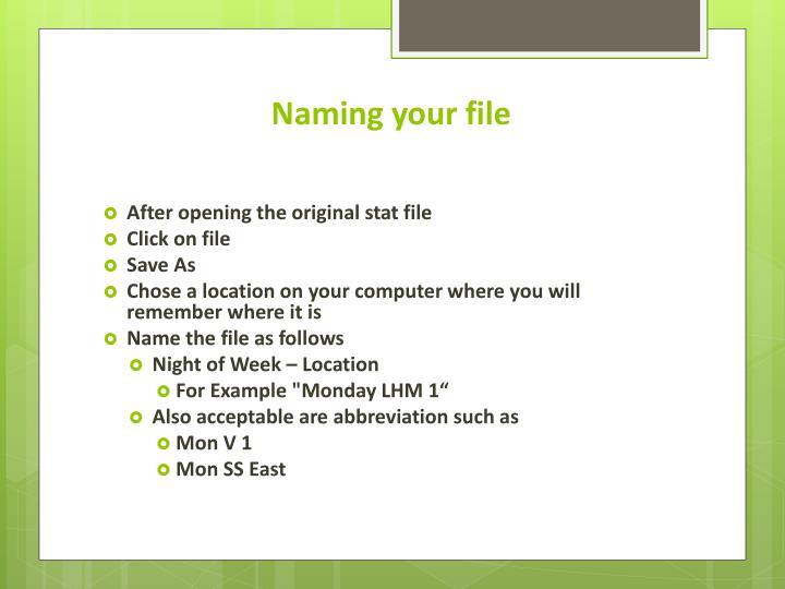 Naming your file