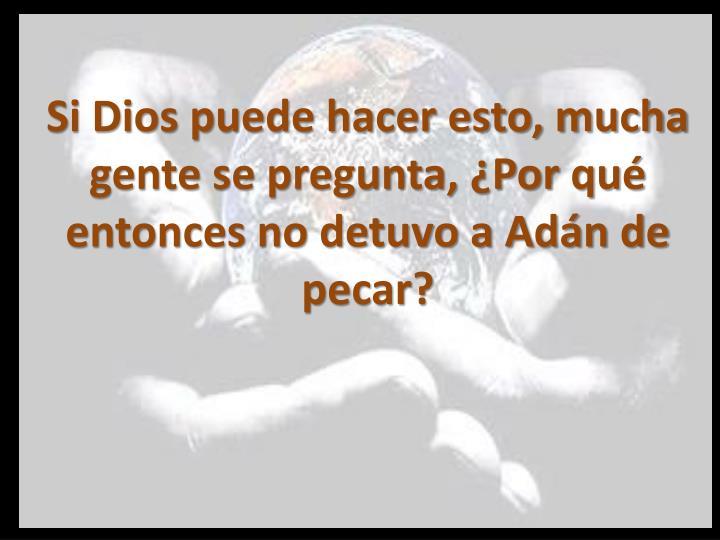 Si Dios puede hacer esto, mucha gente se pregunta, ¿Por qué entonces no detuvo a Adán de pecar?