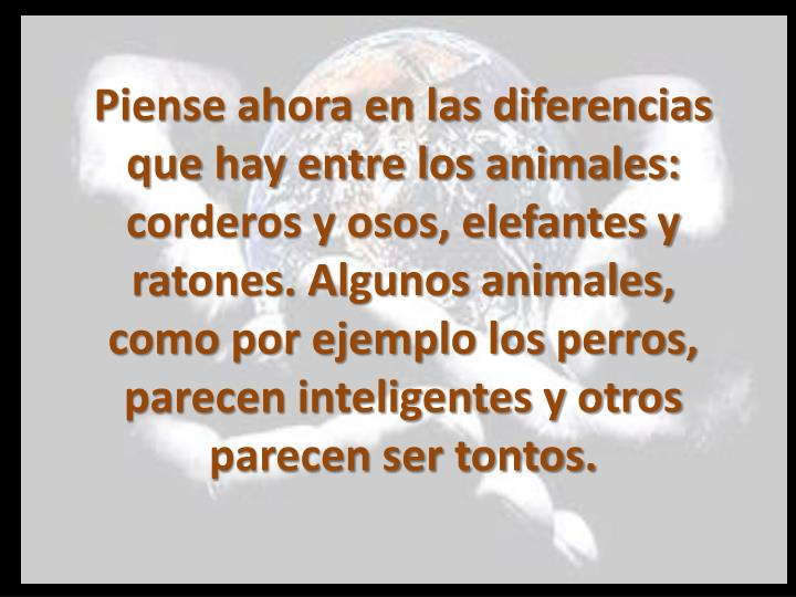 Piense ahora en las diferencias que hay entre los animales: corderos y osos, elefantes y ratones. Algunos animales, como por ejemplo los perros, parecen inteligentes y otros parecen ser tontos.