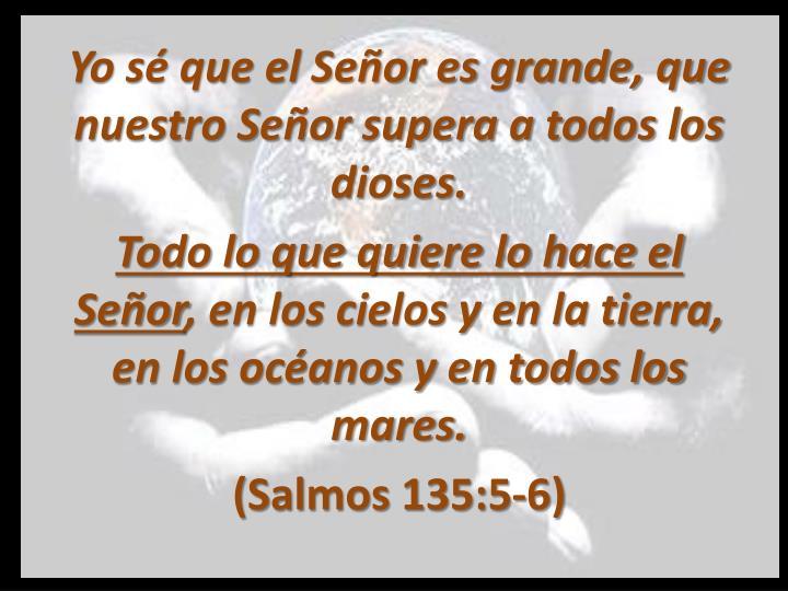 Yo sé que el Señor es grande, que nuestro Señor supera a todos los dioses.