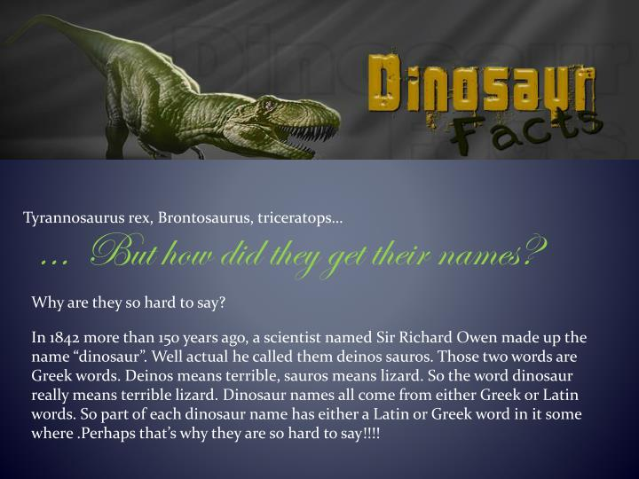 Tyrannosaurus rex, Brontosaurus, triceratops…