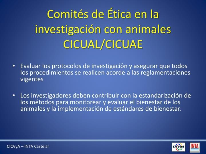Comités de Ética en la investigación con