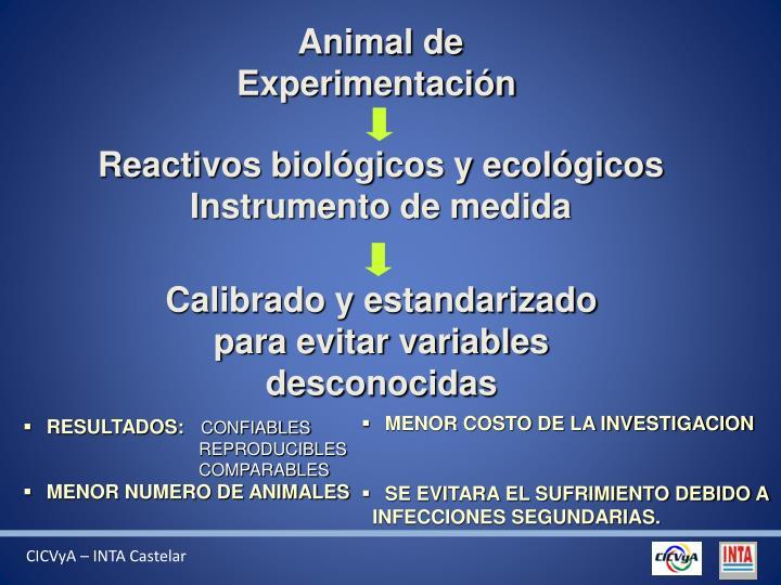 Animal de Experimentación