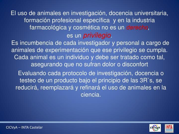 El uso de animales en investigación, docencia universitaria, formación profesional específica  y en la industria farmacológica y cosmética no es un