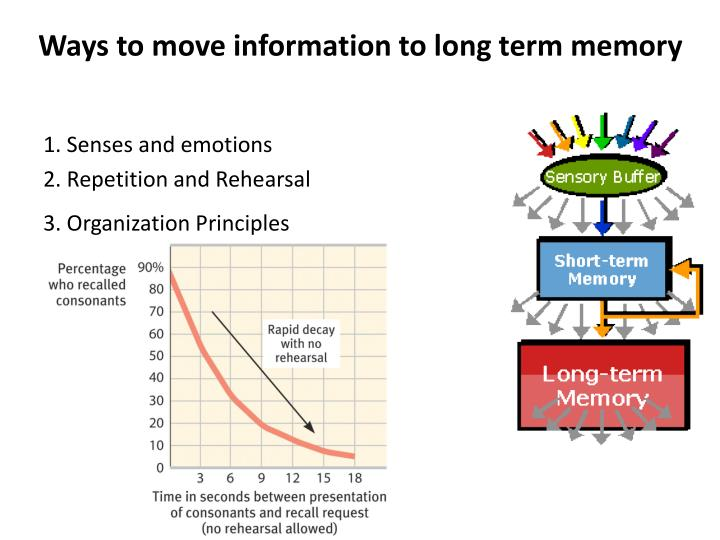 Drugs to improve memory recall picture 1