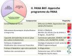 ii pana bkf approche programme du pana