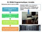 iii pana programmatique livrable
