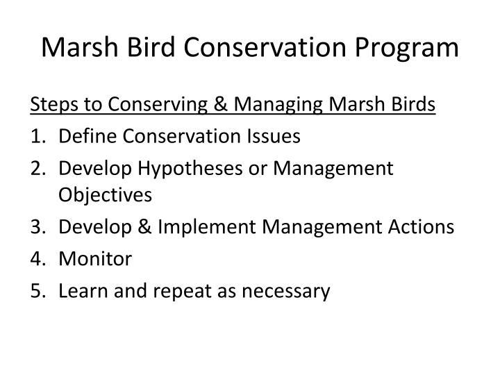 Marsh Bird Conservation Program