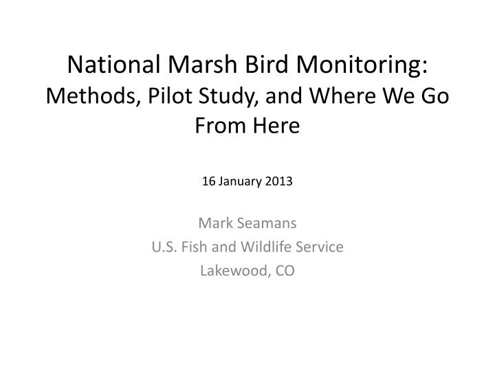 national marsh bird monitoring methods pilot study and where we go from here 16 january 2013