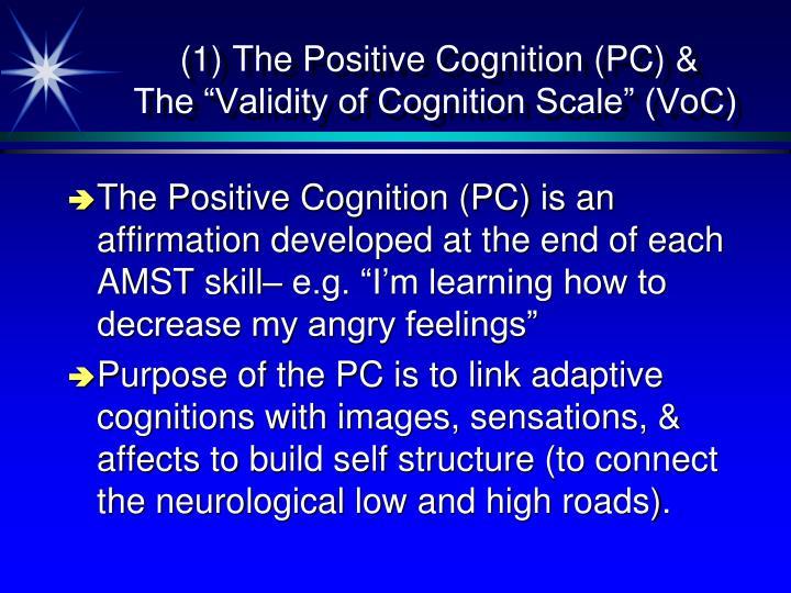 (1) The Positive Cognition (PC) &