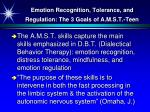 emotion recognition tolerance and regulation the 3 goals of a m s t teen