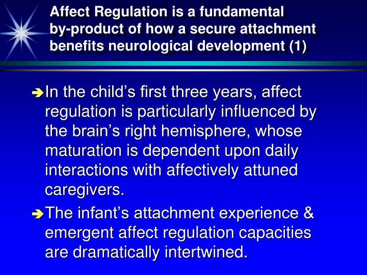 Affect Regulation is a fundamental