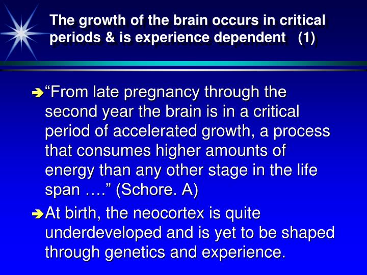 The growth of the brain occurs in critical periods & is experience dependent   (1)