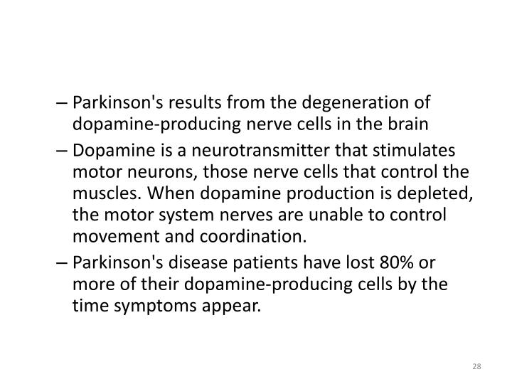 Parkinson's results from the degeneration of dopamine-producing nerve cells in the brain