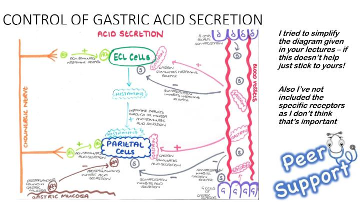 CONTROL OF GASTRIC ACID SECRETION