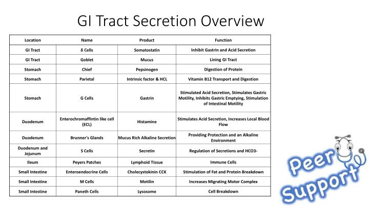 GI Tract Secretion Overview