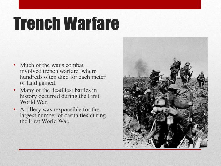 warfare of the world wars essay
